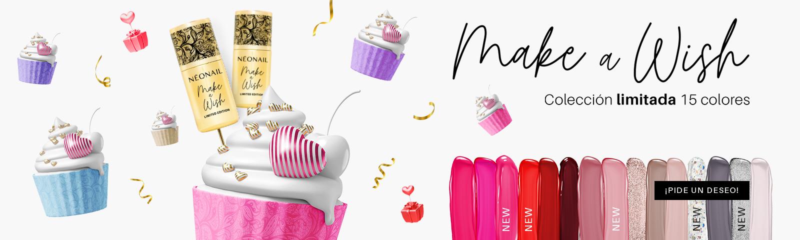 Make a Wish conoce los colores