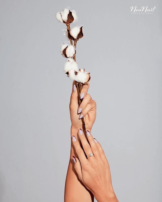 Delicadeza de algodón